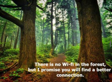 camping-wi-fi